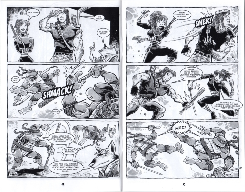 TMNT Smash-Up.  Art by Jim Lawson.  This was a mini-comic included with copies of the videogame of the same name.  Like with the game, the versions of the characters seen here are not meant to represent any one incarnation of the turtles.